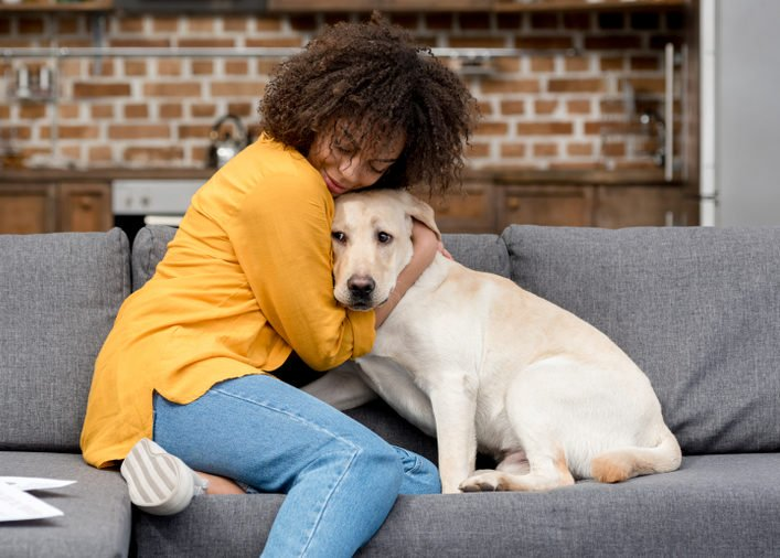 Top Ten Tips For Dog Owners
